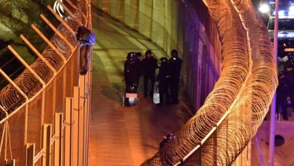 Spain border guards find migrants in suitcase