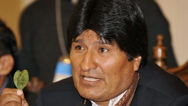 Bolivia Nearly Doubles the Area Allowed for the Legal Planting of Coca
