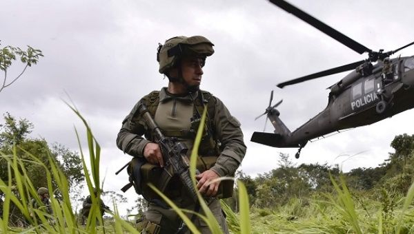 Colombia coca cultivation rises by 50% says UN