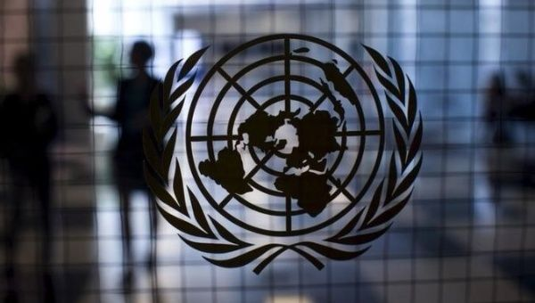 United Nations workers declare sexual misconduct thrives inside group: 'We're such hypocrites'