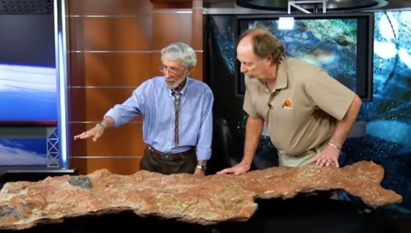 Mammal, Dinosaur Footprints Found On Fossilized Slab Discovered At Goddard Flight Center