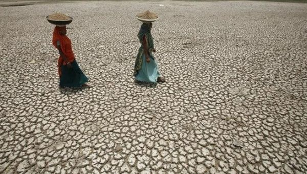 Land decay to displace tens of millions by 2050
