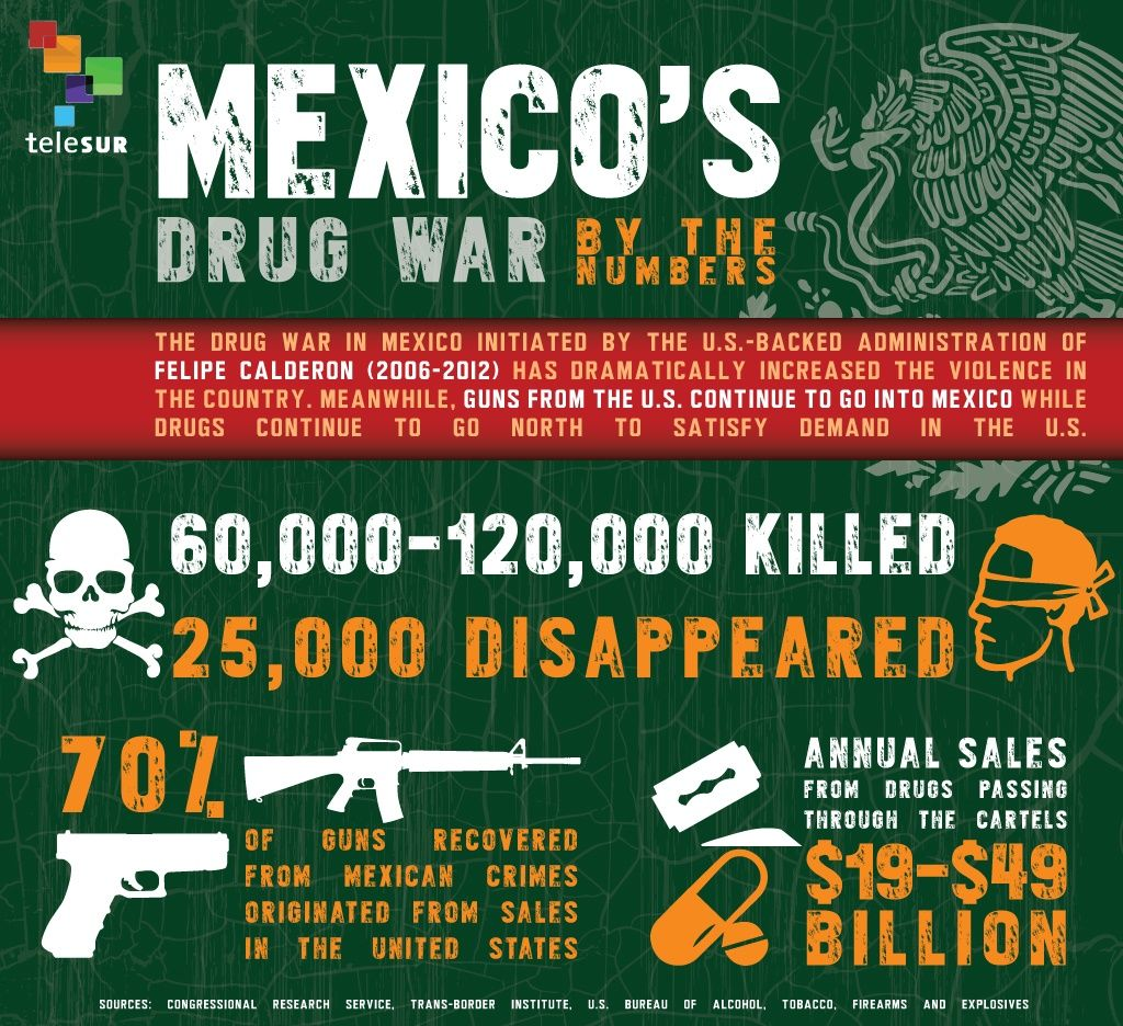 essay on mexican drug cartels