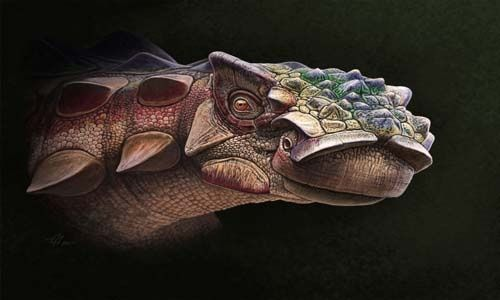 Científicos descubren nueva nueva especie de dinosaurio acorazado en Estados Unidos