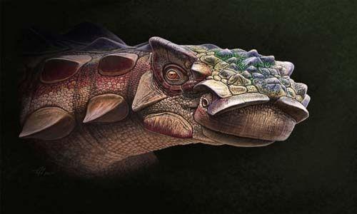 Descubren increíble especie de dinosaurio acorazado — Fotos
