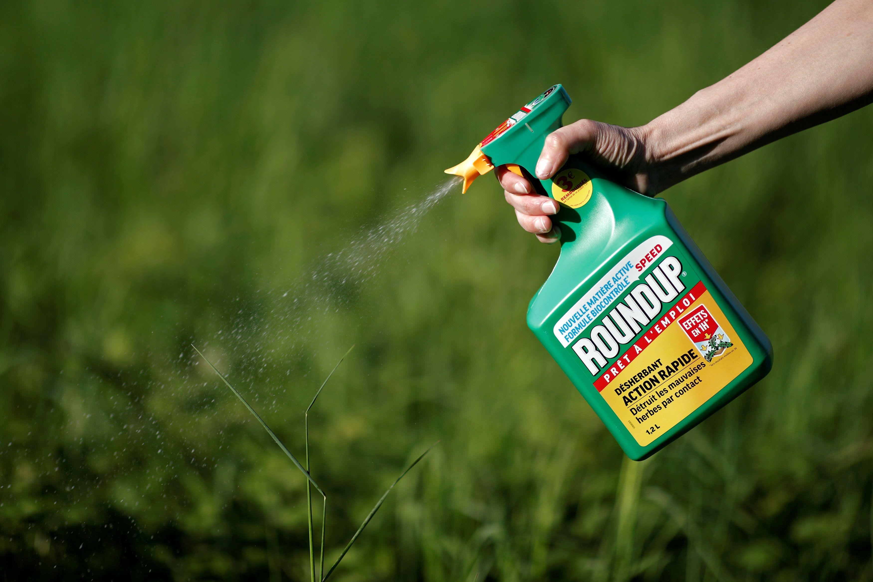 Bayer, optimista por recurso de Monsanto ante condena por glifosato