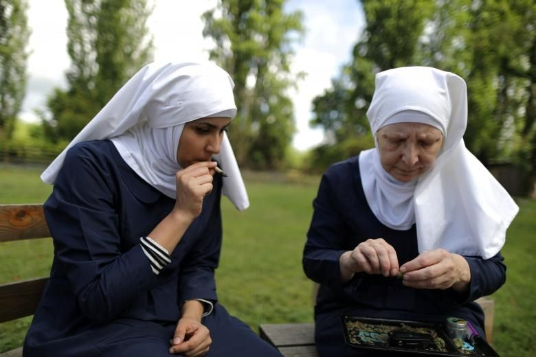 'Weed nuns' grow and harvest cannabis in California