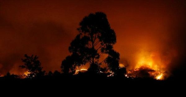 More than 60 killed by raging forest fires in Portugal