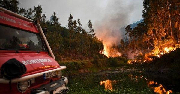 Portugal Forest Fires: 43 Dead, PM Calls Disaster a 'Tragedy'